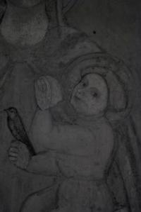 infrarosso affresco della vergine maria affresco parma avd@ (6)