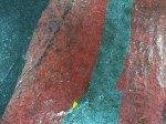 fotogrammi-microscopia-su-dipinto-a-firma-klee-1240avd.jpg
