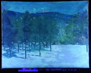 Una fotografia a fluorescenza UV di un dipinto